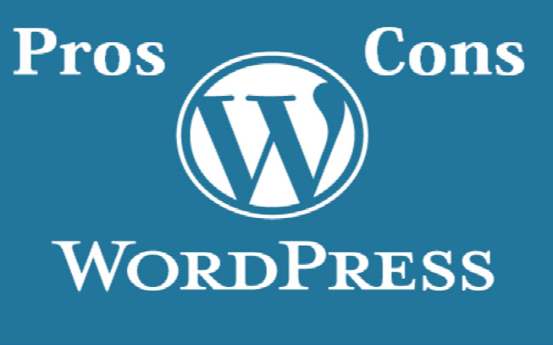 pros and cons of wp